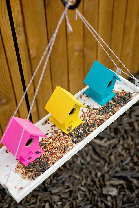 colorful bird feeder