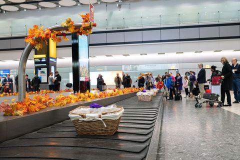 Architecture, Building, City, Leisure, Airport, Interior design, Flower,