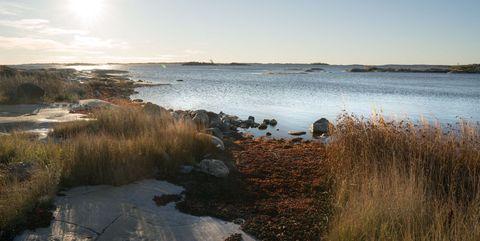 Natural landscape, Water, Natural environment, Marsh, Water resources, Sky, Wetland, Shore, Salt marsh, Nature reserve,