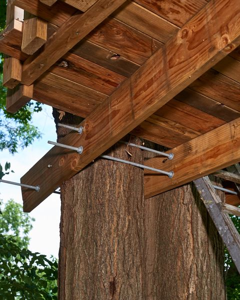 How To Build A Treehouse For Your Backyard Tree House Plans