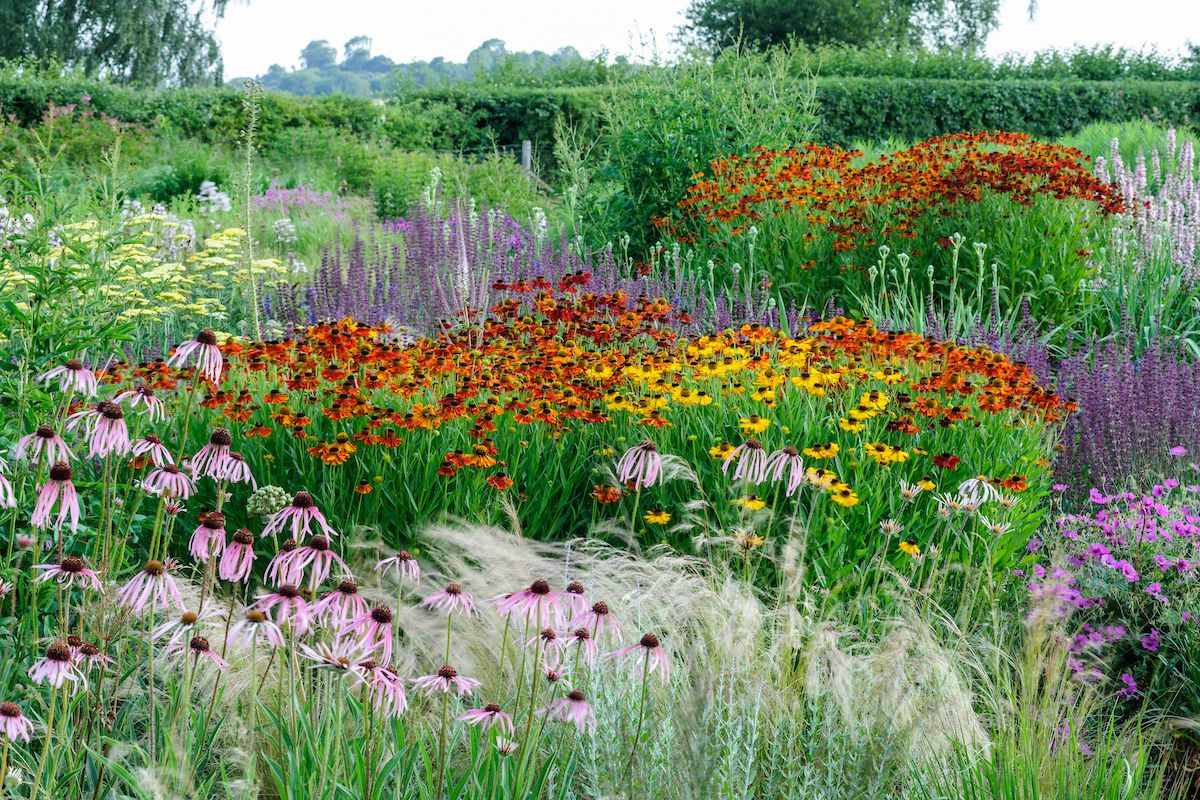 A new book celebrates Piet Oudolf's magical gardens at Hauser & Wirth in Somerset