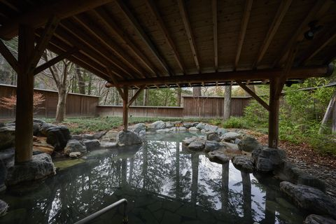 Pond, Beam, Watercourse, Water feature, Shade, Stream, Spring, Reflection, Wetland, Fish pond,