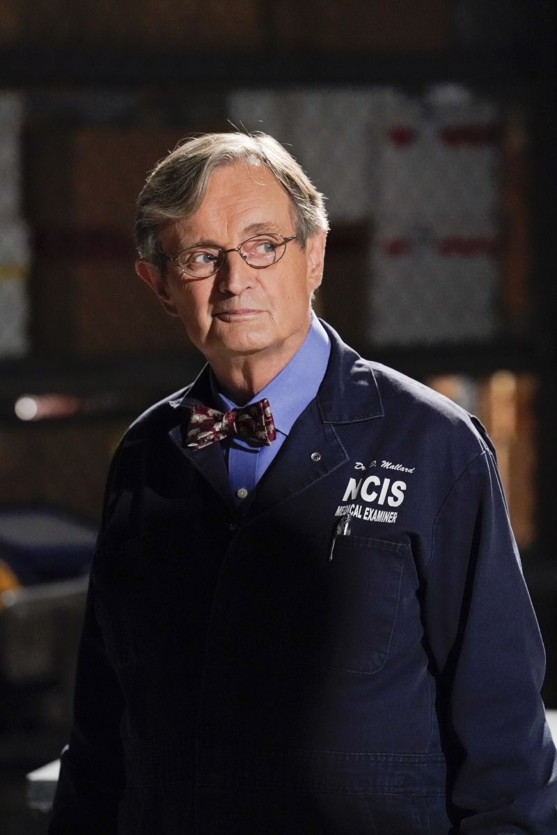 NCIS Confirms If David McCallum's Ducky Is Leaving in Season 16