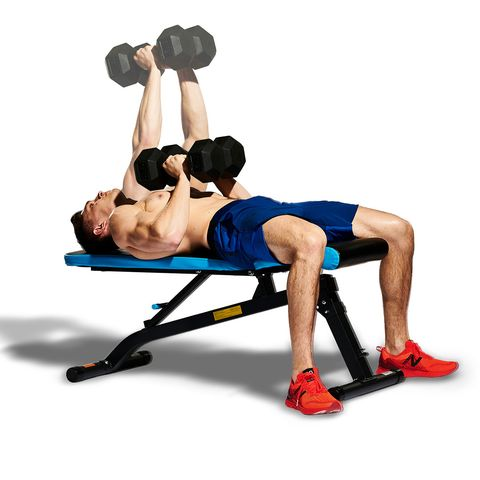 Weights, Exercise equipment, Dumbbell, Arm, Physical fitness, Bench, Muscle, Abdomen, Shoulder, Leg,