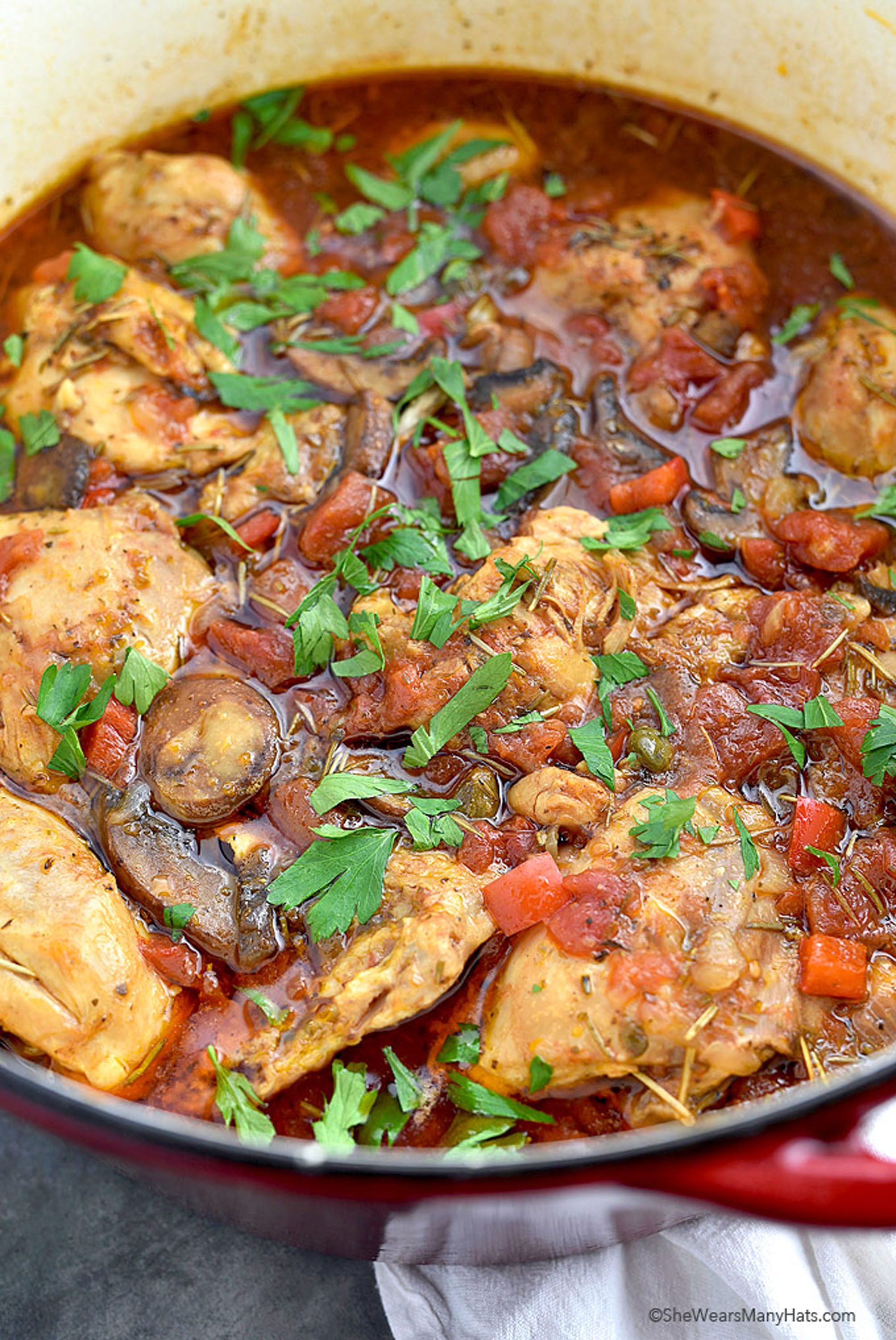dutch-oven-chicken-recipes-chicken-cacciatore