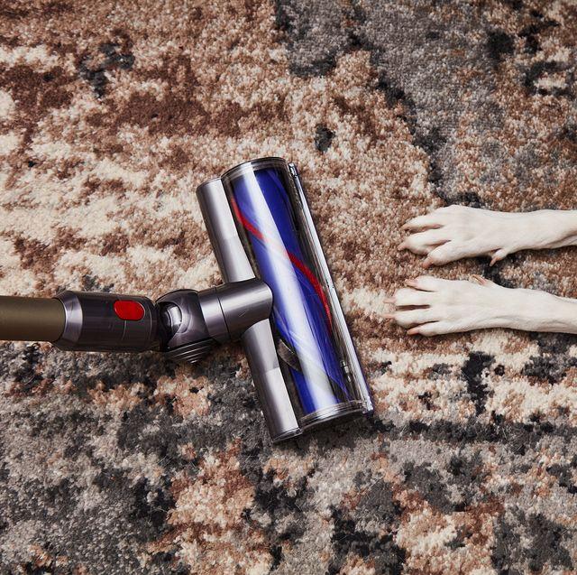 dyson stick vacuum on carpet with dog