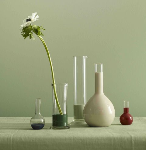 paint, eco friendly, decorating