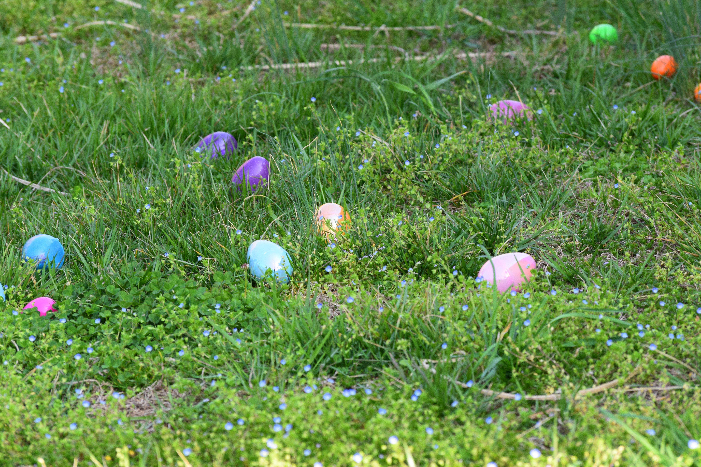 best easter egg hunts
