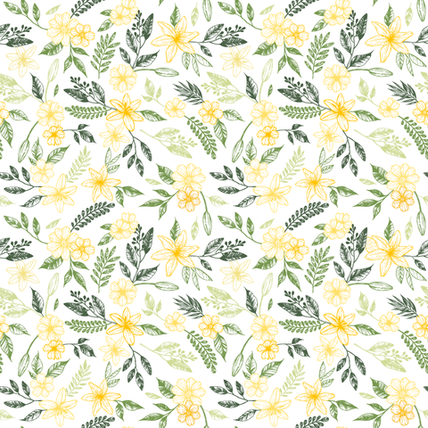White, Flower, chamomile, Plant, Yellow, camomile, Pattern, mayweed, Flowering plant, Daisy family,