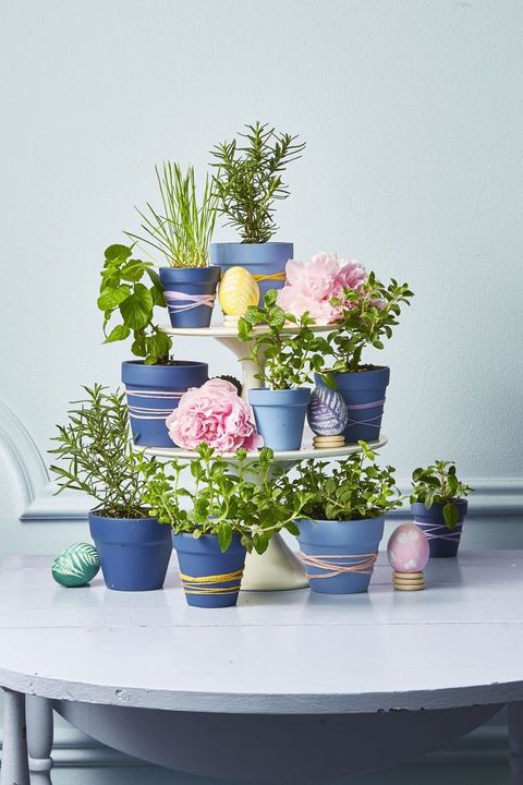 easter flowers - herb centerpiece