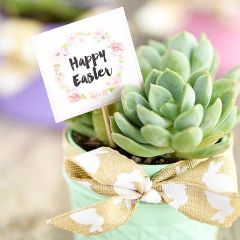 25 Pretty Easter Party Ideas Decorations For An Easter Party