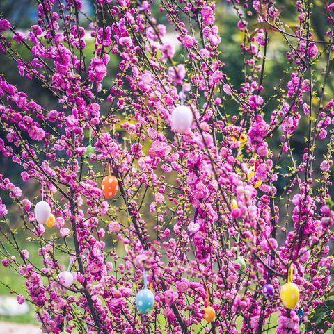 easter prayers pink tree