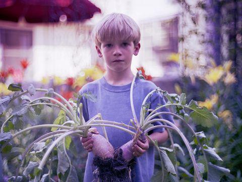 Ecco come fare mangiare le verdure ai bambini