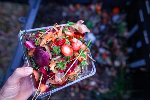 Écologie   composter ses déchets verts