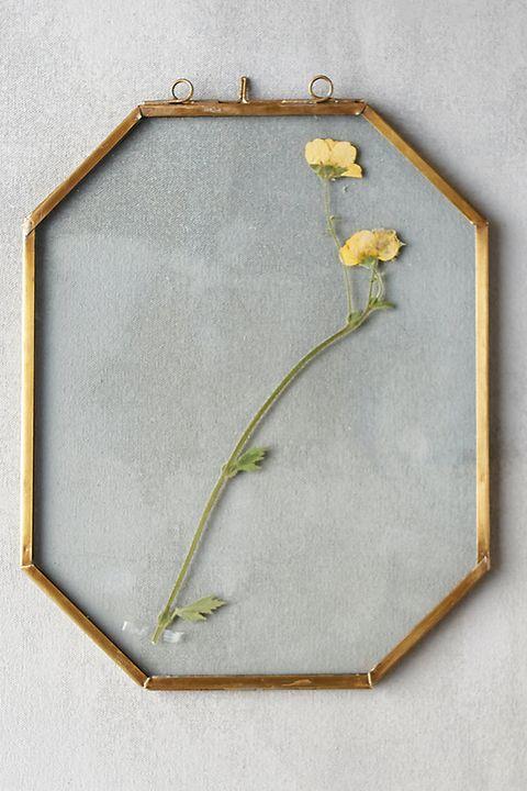 Plant, Wildflower, Metal, Flower,