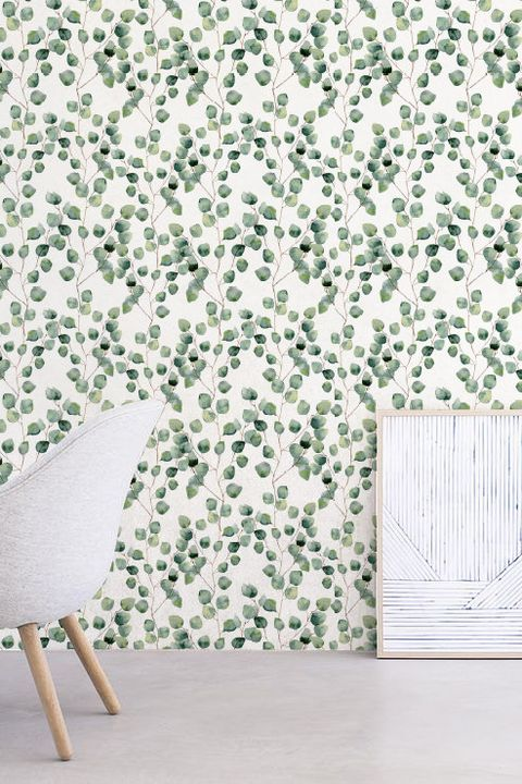 Courtesy Eucalyptus Wallpaper