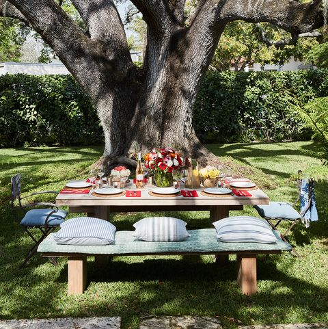 Tree, Table, Picnic table, Botany, Outdoor table, Spring, Picnic, Woody plant, Plant, Furniture,