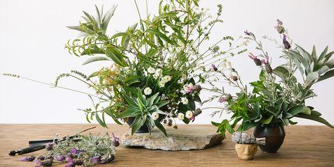 Summer Horoscope Floral Arrangements - Flower Arrangements For Your Zodiac Sign