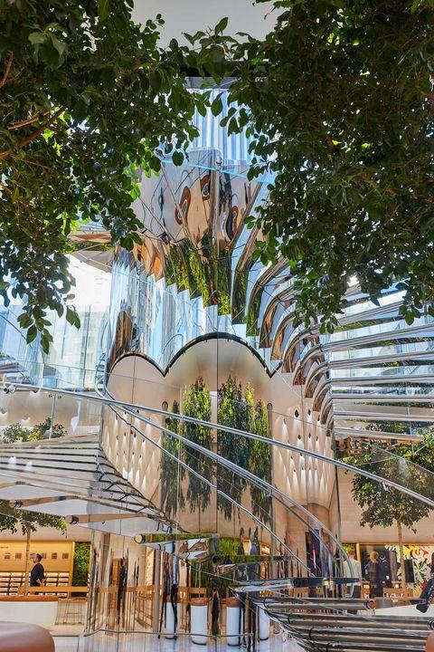 Architecture, Tree, Public space, Building, Botany, Arch, Urban area, Facade, City, Plant,