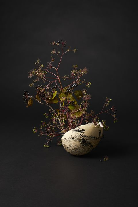 Still life photography, Still life, Branch, Ikebana, Tree, Houseplant, Plant, Twig, Flowerpot, Photography,