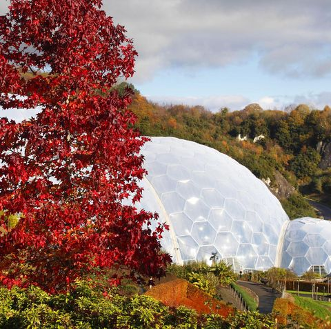 The Eden Project in autumn