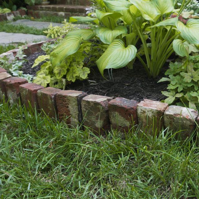 Best Garden Edging Ideas How To Pick