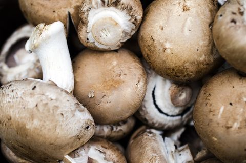 Edible brown mushroom close-up background