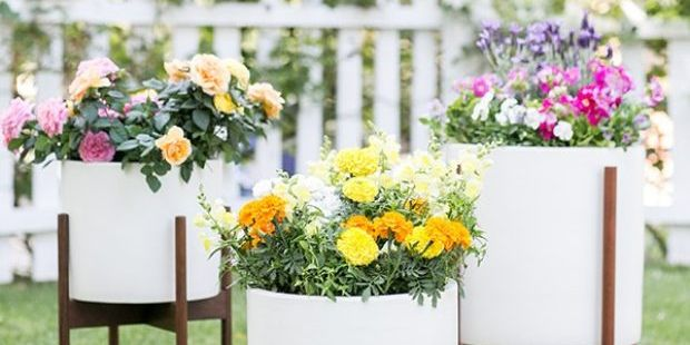 10 Garden Decoration Ideas We're Obsessed With