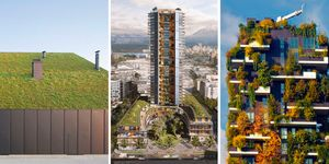Edificios con plantas