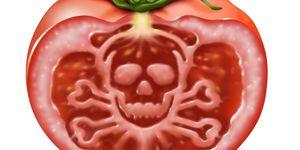 hapje-tomaat-levensgevaarlijk