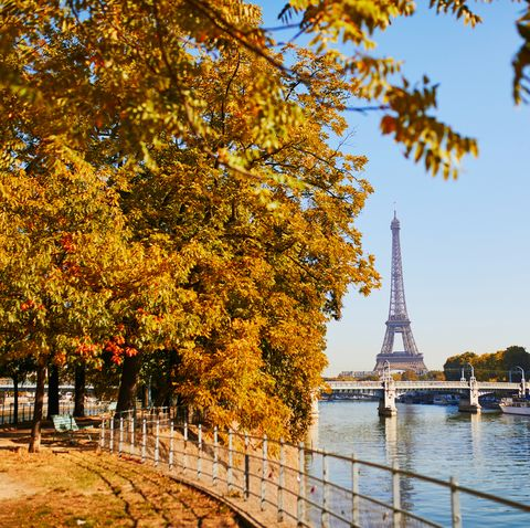 eiffel tower over the river seine on a bright fall day in paris, france