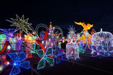 Light, Lighting, Night, Fun, Christmas lights, Organism, Event, Fête, Architecture, Neon,