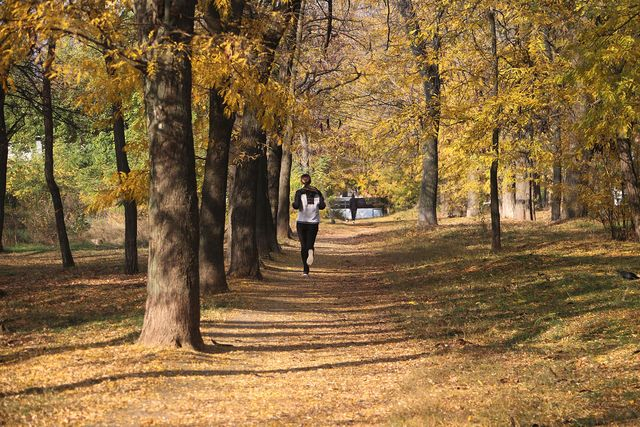 hardlopen in de herfst