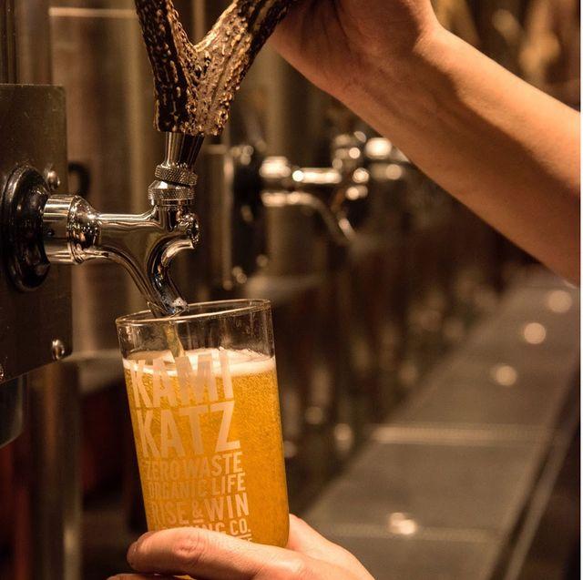 Drink, Beer, Alcoholic beverage, Barware, Lager, Distilled beverage, Wheat beer, Liqueur, Beer glass,