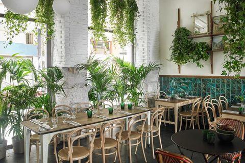 Room, Property, Building, Houseplant, Interior design, Furniture, Restaurant, Table, Plant, Real estate,