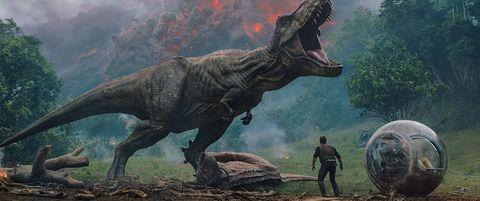 Dinosaur, Tyrannosaurus, Extinction, Terrestrial animal, Velociraptor, Organism, Pachycephalosaurus, Adaptation, Triceratops, Fictional character,