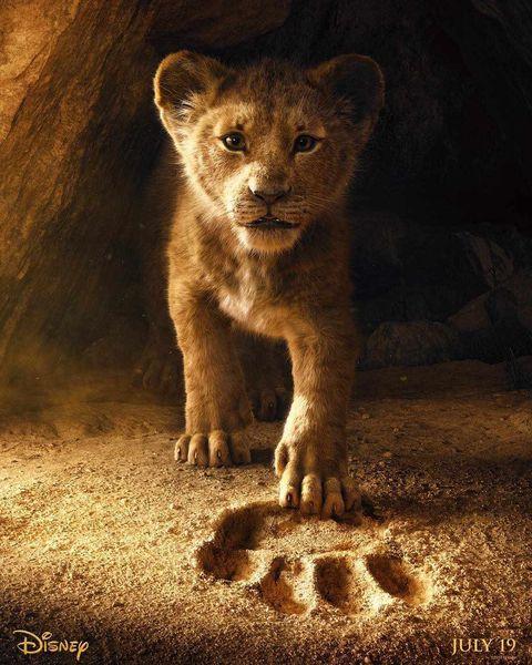 El rey leon poster remake