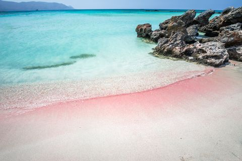 Best Pink Sand Beaches 10 Most Breathtaking Pink Sand