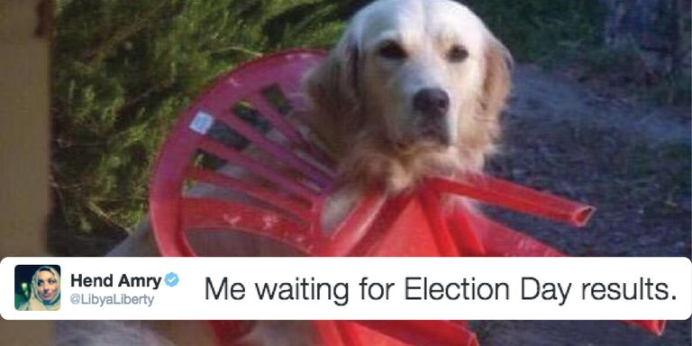 The Funniest Tweets About Election Day Hilarious Twitter - The 19 funniest things tweeted by women in 2016