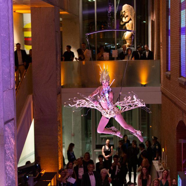 Purple, Violet, Lighting, Light, Event, Tree, Plant, Tourist attraction, Function hall, Performance,