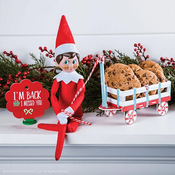elf on the shelf return ideas