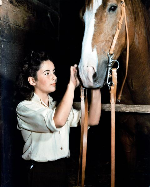 Elizabeth Taylor In 'National Velvet'