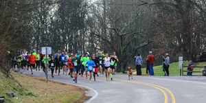 dog runs half marathon finishes 7th