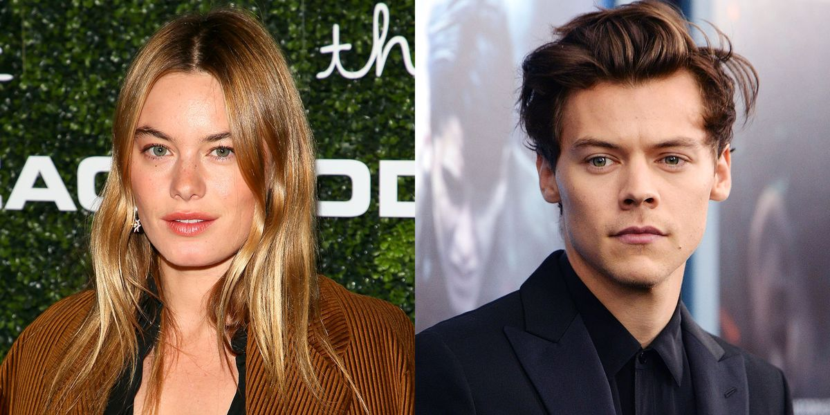 What Harry Styles Cherry Lyrics Reveal About His Camille Rowe Breakup
