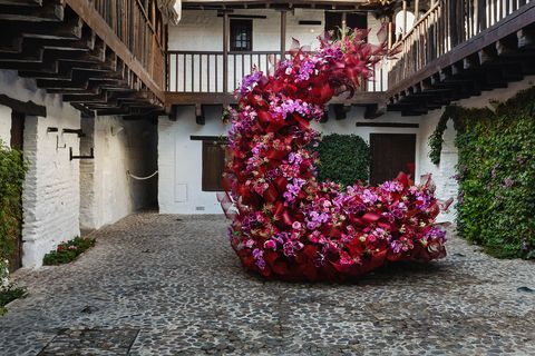 Flower, Red, Pink, Plant, Spring, Botany, Tree, Shrub, House, Architecture,