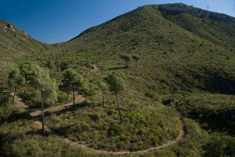 Mountainous landforms, Highland, Mountain, Vegetation, Hill, Natural landscape, Wilderness, Nature reserve, Hill station, Plant community,
