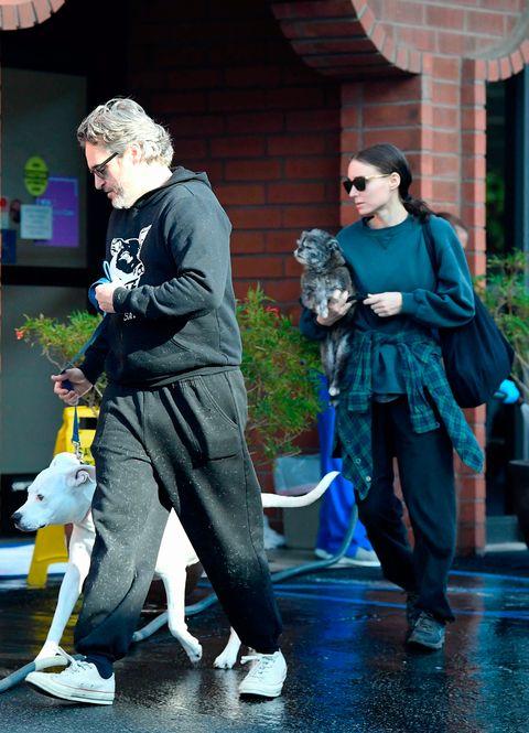 Joaquin Phoenix and Rooney Mara pet dogs