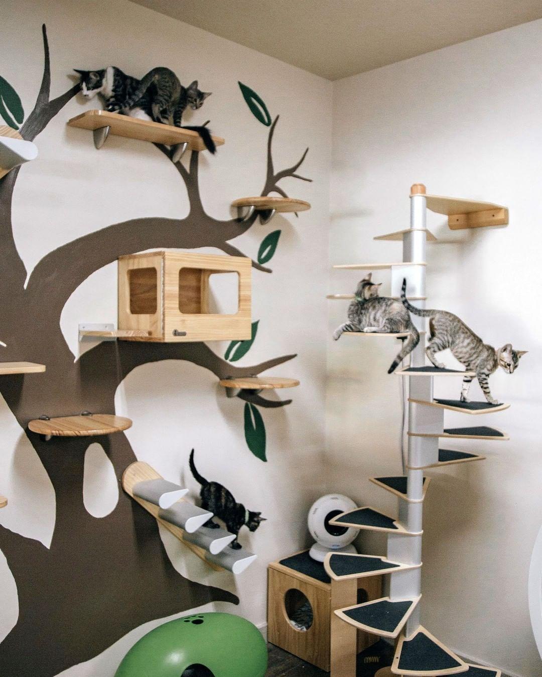 Ideas para crear un parque para gatos casero
