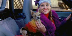 Elle Woods en haar hond in Legally Blonde