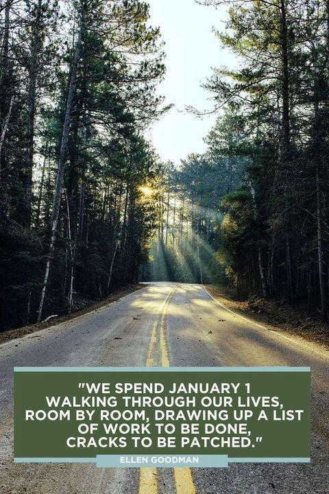 Ellen Goodman New Year Quotes